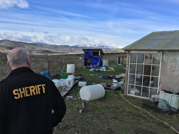 Okanogan County Chief Criminal Deputy Steve Brown surveys the debris left over from an illegal pot farm that had masqueraded as a legal operation.