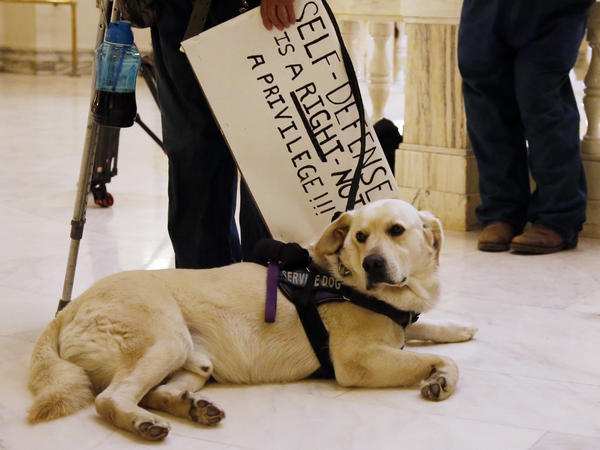 Kathy Renbarger's service dog sits at her feet during a pro-gun rally at the state Capitol in Oklahoma City on Monday.