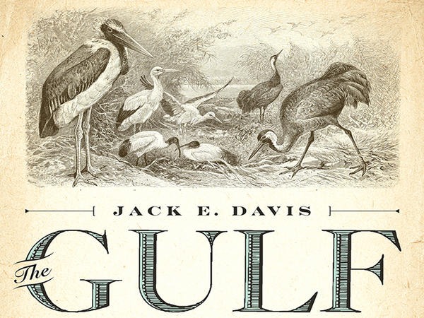"""Jack Davis recently won the 2018 Pulitzer Prize in History for his book """"The Gulf: The Making of an American Sea."""""""