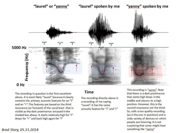 "Story analyzed the acoustic features of the words ""Yanny"" and ""Laurel."""