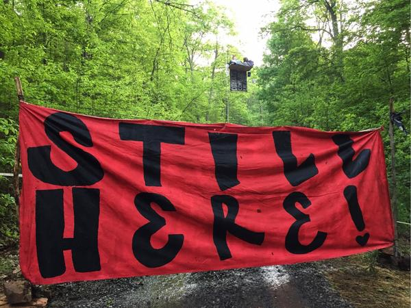 Fern MacDougal sits in a new aerial blockade errected in Jefferson National Forest near Narrows, VA.