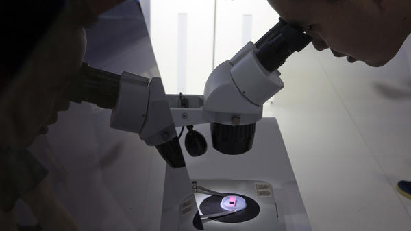 "A visitor to the 21st China Beijing International High-Tech Expo looks at a computer chip through a microscope. The White House said Tuesday that it will impose tariffs on $50 billion in imports from China containing ""industrially significant technology."""