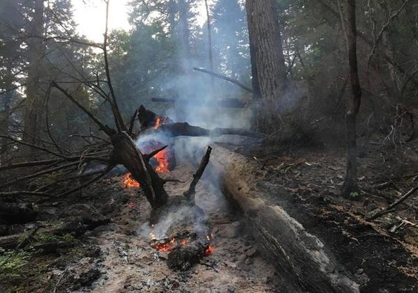 <p>A hot spot in the Eagle Creek Fire was spotted at 2 a.m. Tuesday near the Herman Creek Trailhead.</p>