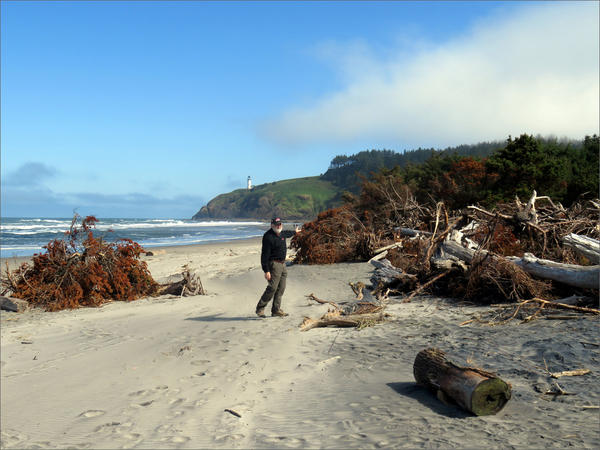 Dale Beasley shows trees killed by saltwater intrusion and erosion that previously fronted the Cape Disappointment State Park campground.