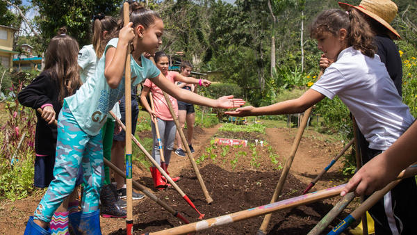 """At Botijas Secondary School No. 1, students work with hoes to ready new beds for planting while chanting in Spanish, """"Up and down, we prepare the earth."""""""