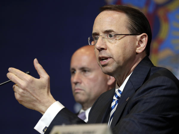 Deputy Attorney General Rod Rosenstein speaks during a roundtable on immigration policy at Morrelly Homeland Security Center on May 23 in Bethpage, N.Y.