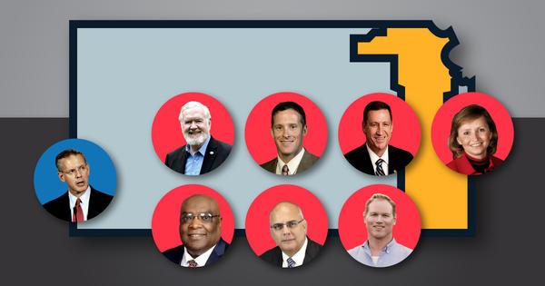 Democrat Paul Davis awaits the winner among seven GOP primary contenders: (top row, left to right) Steve Fitzgerald, Kevin Jones, Dennis Pyle, Caryn Tyson, (bottom row) Vernon Fields, Doug Mays, and Steve Watkins.