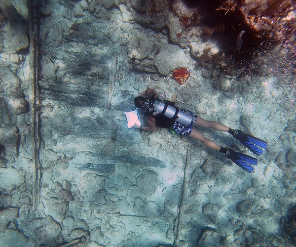A volunteer from Diving With A Purpose records data from a shipwreck exposed by Irma in the Upper Keys.