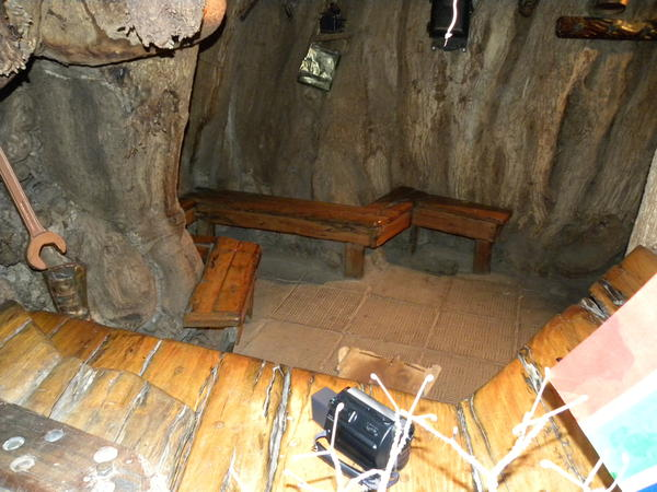<em></em>The Platland tree in South Africa was Africa's biggest baobab tree before its death last year. The cavernous interior held a cocktail bar that could accommodate 15 people.