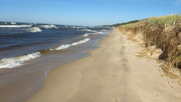 Nothing says Michigan summer like a trip to a Great Lakes beach.