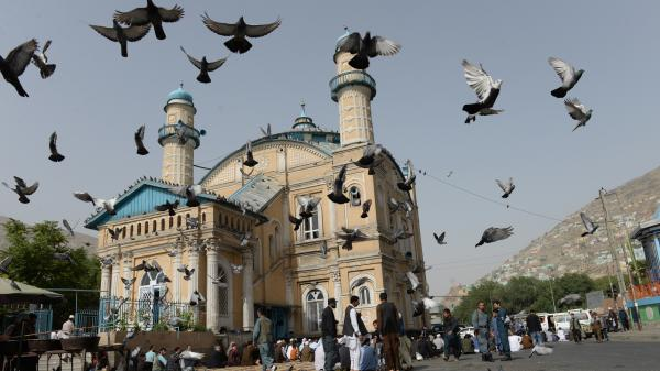 Pigeons fly into the air as Muslims offer prayers at the start of the Eid al-Fitr holiday, which marks the end of Ramadan, at the Shah-e Do Shamshira Mosque in Kabul on Friday. This Eid, Afghans welcomed the start of the Taliban's first cease-fire since the 2001 U.S. invasion