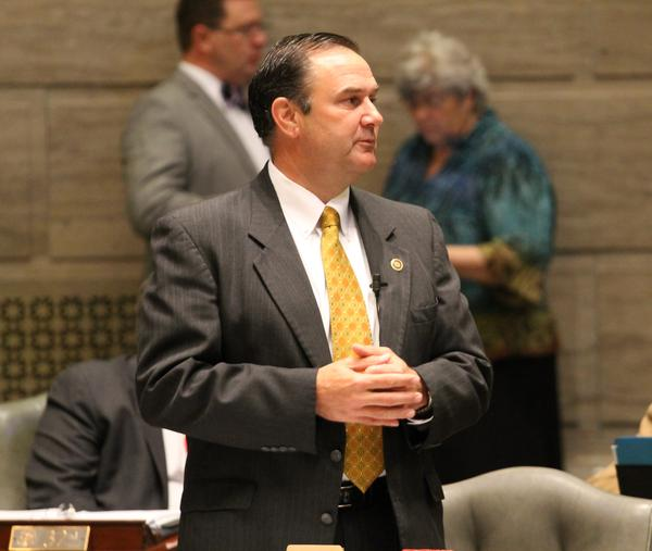 The Missouri Democratic Party has filed a lawsuit challenging the appointment of former state Sen. Mike Kehoe, pictured here on the Senate floor, as lieutenant governor.