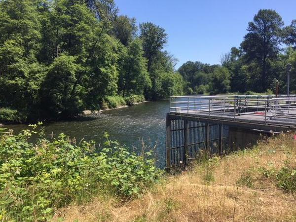 <p>The city of Salem's drinking water intake on the North Santiam River.</p>