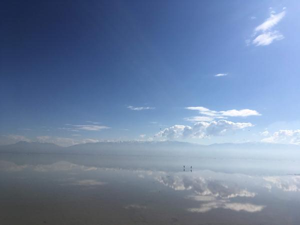 A view west from the edge of the wetlands at the Great Salt Lake.