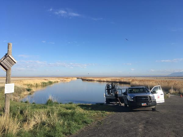 A team from the Great Salt Lake Ecosystem Program prepares to launch an airboat for a bird count.