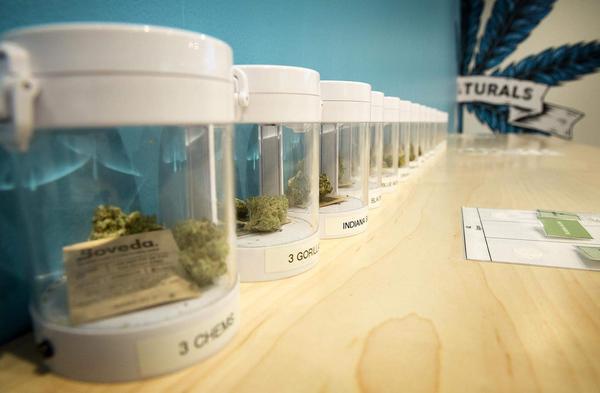 Marijuana samples at the Needham dispensary. (Robin Lubbock/WBUR)