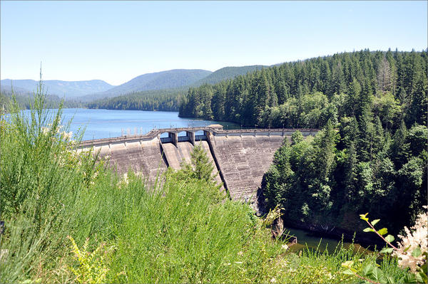 Nearly 100 water systems in Oregon will begin collecting samples for harmful contaminants from algae blooms. Shown is Bull Run Reservoir 1, part of Portland's water system.