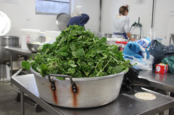 Rhonda Mayberry's creasy greens, ready<strong> </strong>to be cooked and canned.