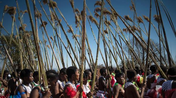 Women march in the 2016 traditional Reed Dance at the royal palace in Lobamba. On Thursday, in celebration of the country's 50th year of independence, King Mswati III declared that he was changing the name of Swaziland to eSwatini.