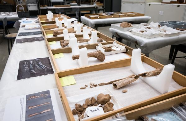 A pit of amputated limbs and two nearly complete skeletons that date back to the Civil War were discovered at Manassas National Battlefield Park in Virginia. Scientists at the Smithsonian Institution's National Museum of Natural History have been analyzing the bones to learn more about them and to whom they may have belonged.