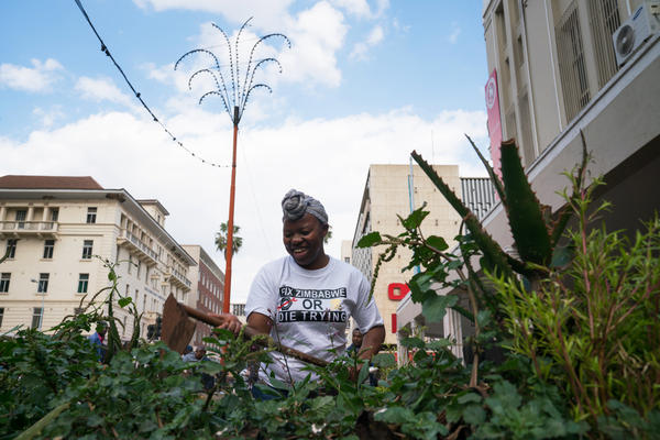 Amanda Murombo, Madamombe's niece, works in a planter in the center of Harare. The planters had been full of trash and weeds.