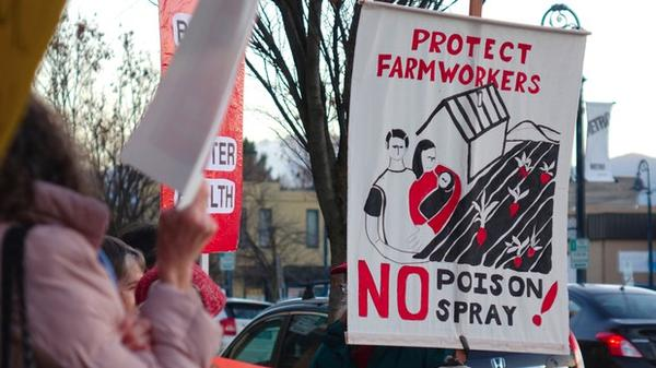 <p>Advocates at a protest in Medford say new Oregon OSHA rules won't protect farmworkers.</p>