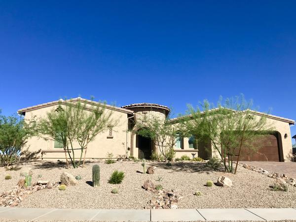 Since the 1980s Tucsonans have replaced their green lawns with decomposed granite and opted for plants like palo verde trees and cacti which can endure long periods of drought and extreme heat.