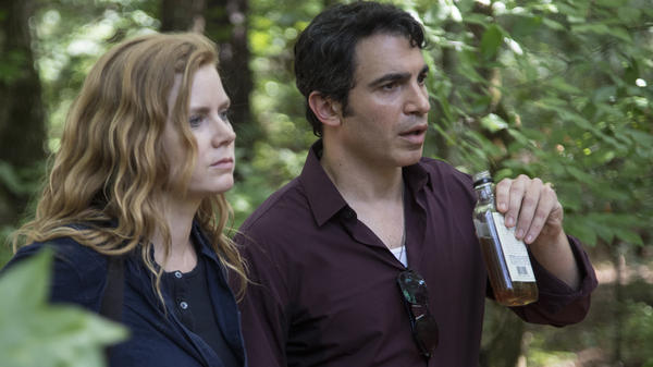 Amy Adams and Chris Messina play a reporter and a detective both investigating the same crimes in HBO's <em>Sharp Objects</em>.