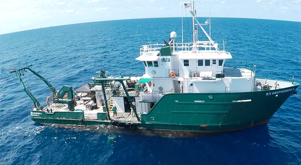 USF Marine researchers on patrol in the Gulf of Mexico