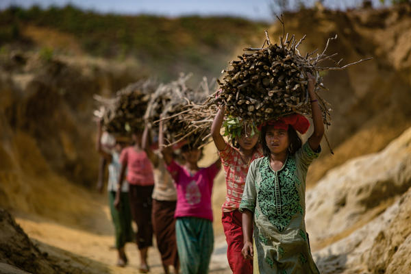 Rohingya children carrying firewood into the Kutupalong camp in Bangladesh. Refugees have stripped almost all the area vegetation to use in cooking fires.