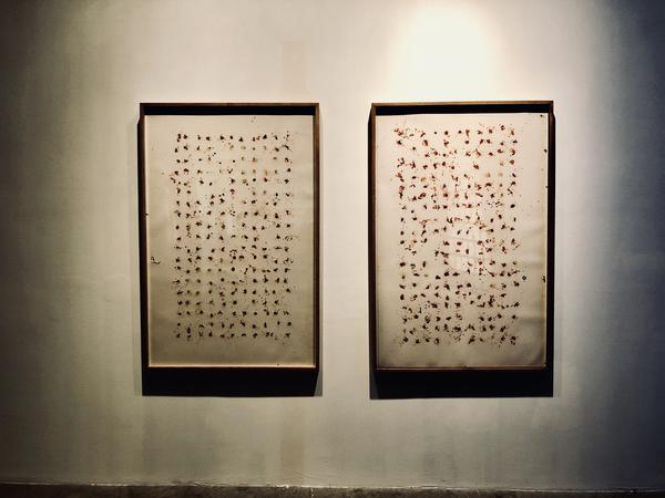 """Franky Cruz created """"Diptych from Vivarium Meconium"""" using butterly excrements."""