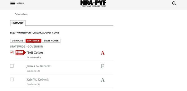 The NRA's ratings of candidates in the Republican primary for governor