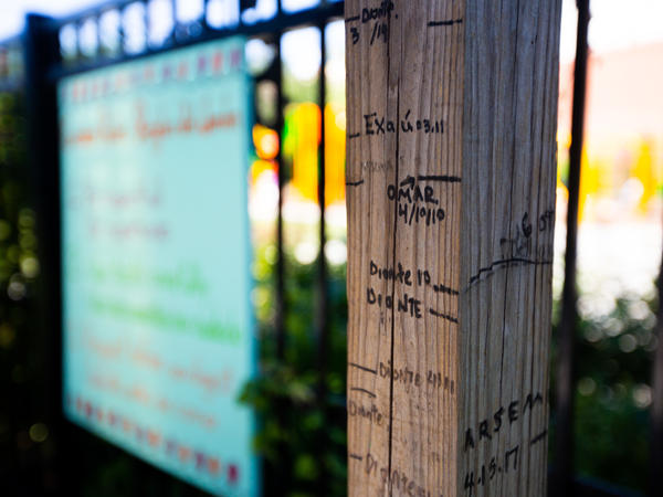 Kids who come regularly to the Girard Children's Community Garden mark their growing heights on this wooden post.