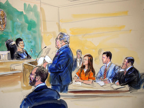 A courtroom sketch depicts Butina as she listens to her attorney, Robert Driscoll, during a hearing in federal court in Washington on Wednesday.
