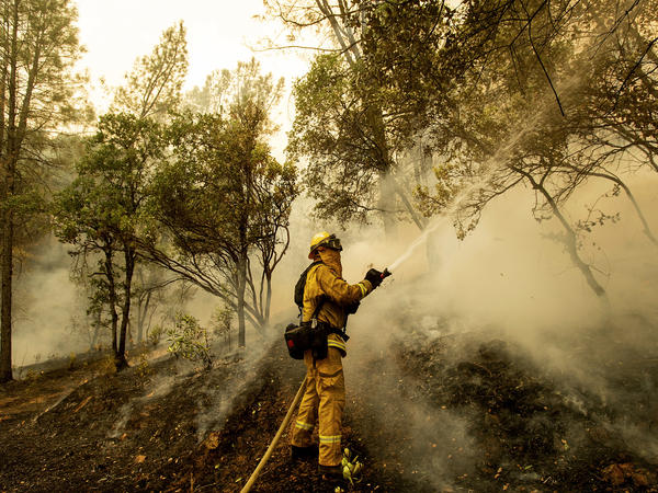 Firefighter Scott Brown sprays water on a backfire while battling the Carr Fire in Redding, Calif., on Saturday.