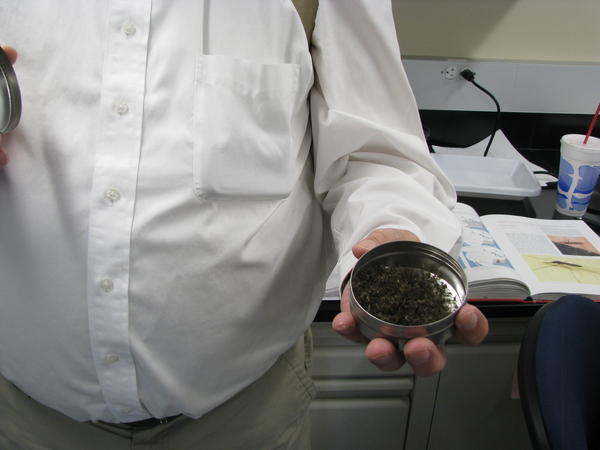 MSU Professor Dr. David Claborn Shows Mosquitos Collected for the Study