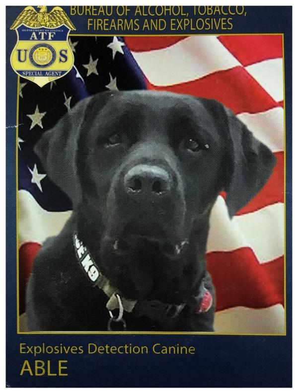 "The ""business card"" for bomb-sniffing dog Able."