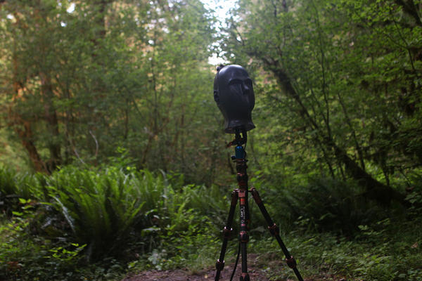 Fritz, the microphone system used by Mikkelsen and his mentor, audio ecologist Gordon Hempton, stands on a tripod. They use their recordings to promote the idea that natural sounds are complex, diverse and important.