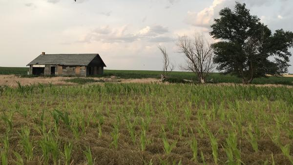 One of the many abandoned homes outside Ogallala, Neb.