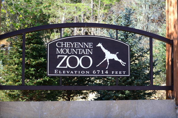 The Cheyenne Mountain Zoo says a heavy hail storm damaged its infrastructure and killed two animals on Monday.