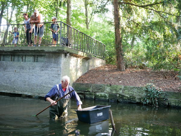 Fisherman Klaus Hidde checks a Berlin stream for Louisiana crawfish while onlookers watch. Tens of thousands of the creatures have been spotted in the city's waterways in the last few years.