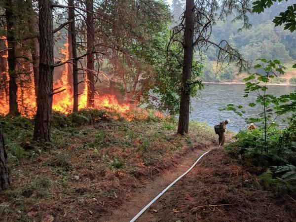 <p>Fire burns next to control line by the Rogue River. A system of hoses and pumps provides water along the hand line. Additionally, notice how vegetation adjacen to the line has been thinned so that fire will stay on the ground.</p>