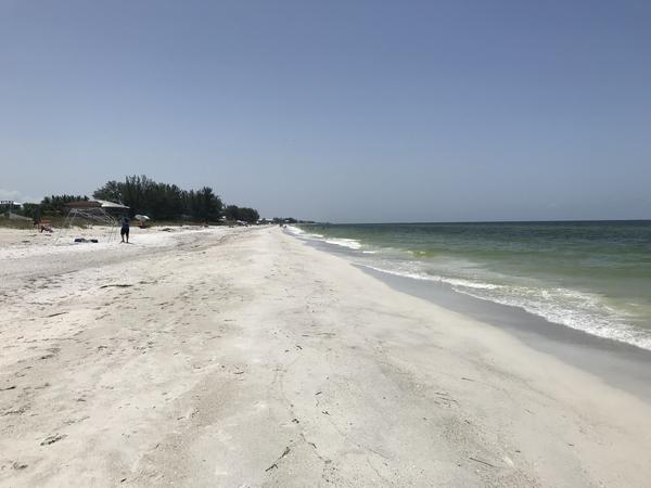 Holmes Beach is one of the Florida beaches that has been affected by red tide.