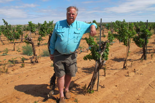 Bobby Cox, who owns a 30-year-old vineyard in Lubbock, Texas, has seen many of his vines destroyed by herbicide drift.