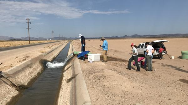Scientists from the FDA and the University of Arizona test water from an irrigation ditch near Yuma, Ariz., in early August. The FDA found toxic <em>E. coli</em> in another irrigation canal less than a mile from this one.