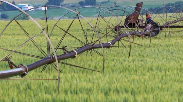 <p>The beauty of Eastern Oregon's agricultural scenery</p>