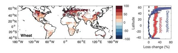 <p>For each degree the earth warms, insects could consume 25% more wheat than they already do. By the end of the century, losses due to insects could double. The red areas of the map show where wheat losses due to insects are projected to increase.</p>