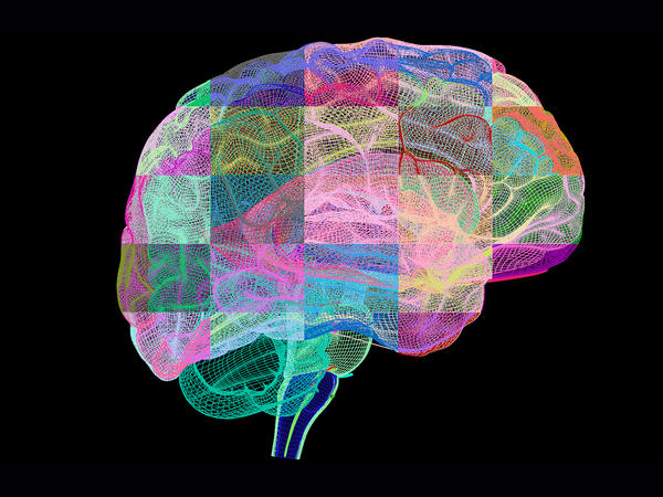 Experimental drugs that clear clumps of proteins from the brains of Alzheimer's patients haven't panned out yet.