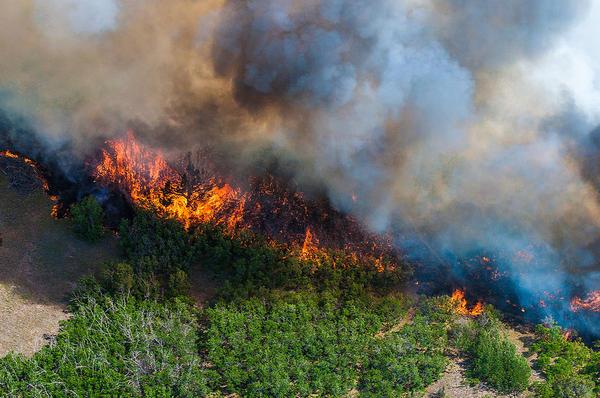 A view of the East Peak wildfire near La Veta, Colo., June 21, 2013.