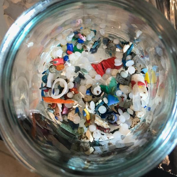 Microplastics found along Lake Ontario by Rochman's team